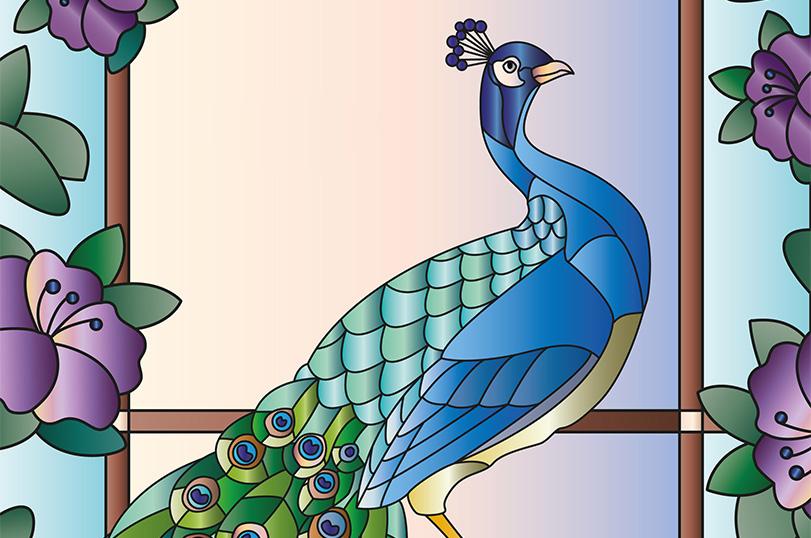 Fenster_Peacock